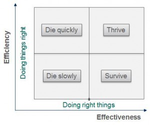 efficiency_effectiveness